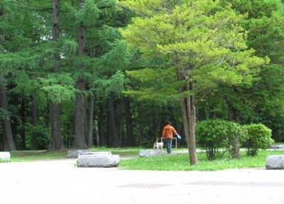 公園で犬の散歩